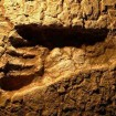 Fossil footprints of early modern humans, Tanzania