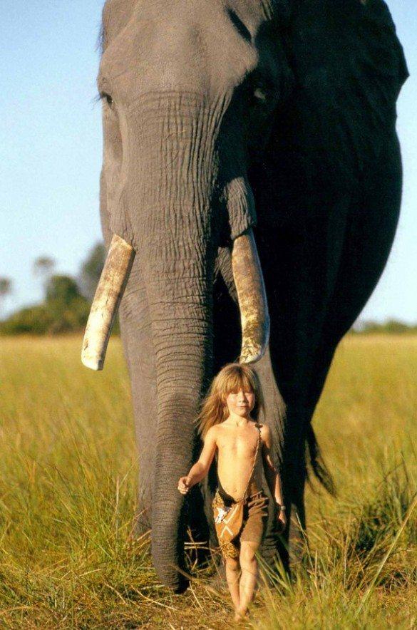 Tippi Benjamine Okanti Degré, French wildlife photographers, Alain Degré, Sylvie Robert, Namibia, Himba tribespeople, Kalahariwild animals, born free, abu elephant, bushmen,