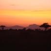 Loisaba sunrise, Kenya