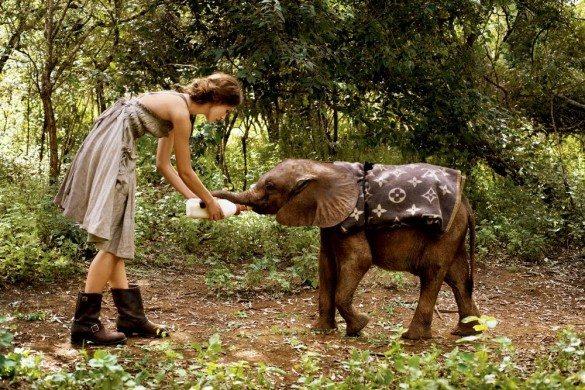 Keira Knightley, Arthur Elgort, baby elephant, young elephant